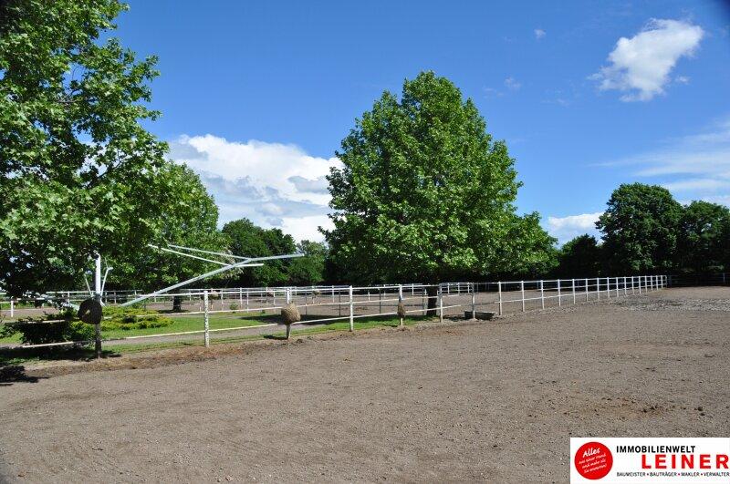Pferde/Tierliebhaber aufgepasst! Verwirklichen Sie sich Ihren Traum vom eigenen Haus + Pferdestall! Nähe Wien! Objekt_6933 Bild_401