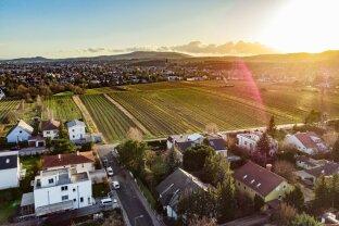 Coming soon - Eck - Baugrund bei den Perchtoldsdorfer Weingärten