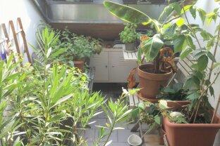 ++ SINGLE's AUFGEPASST ++ Gemütliche Dachterrassenwohnung mit kleiner uneinsehbaren Terrasse in den Innenhof