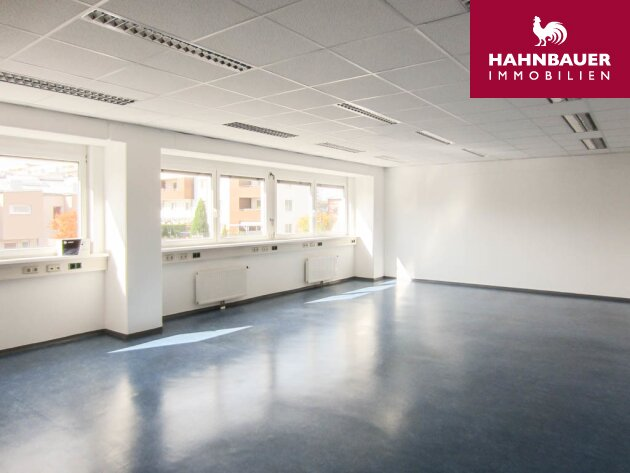 Büro - 214 m2 südlich von Wien Brunn am Gebirge