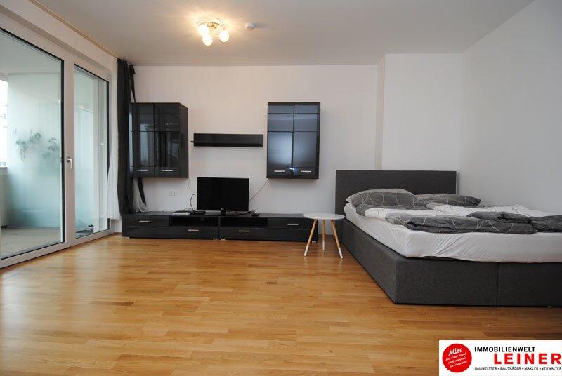 40 m² Mietwohnung in Schwechat - Neubau /  / 2320Schwechat / Bild 2
