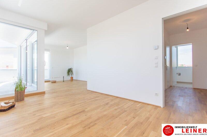 Stilvoll leben – Designerwohnungen am Rande Wiens Objekt_11243 Bild_597