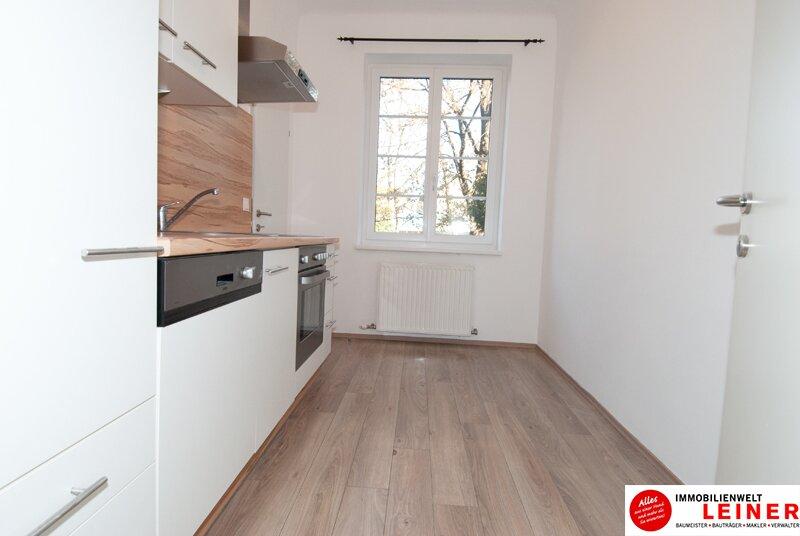 Schwechat:  60m² Mietwohnung  - 2 Zimmer in herrlich ruhiger Zentrumslage! Objekt_9244 Bild_833
