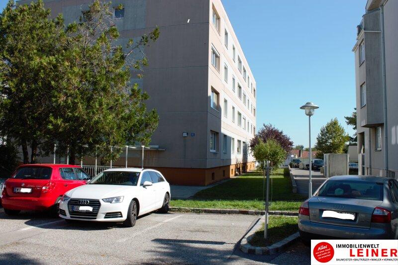 *Ebergassing* Nette, ruhige 2 Zimmer Wohnung (15min von WIEN) !!! Objekt_8979 Bild_895