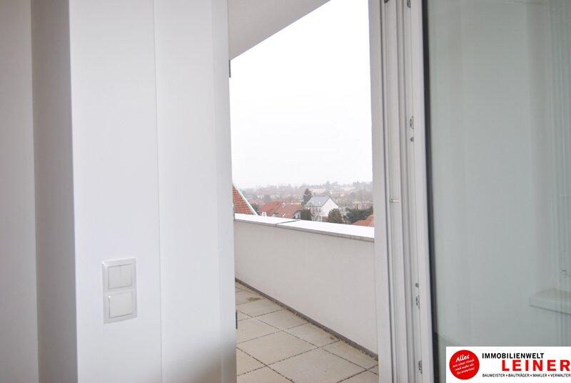 Schwechat - 57 m² Mietwohnung mit Terrasse im Zentrum - Erstbezug Objekt_9290 Bild_490