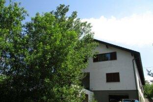 Sehr großzügiges Mehrfamilienhaus mit 590m² Wohnfläche bei Oberpullendorf?