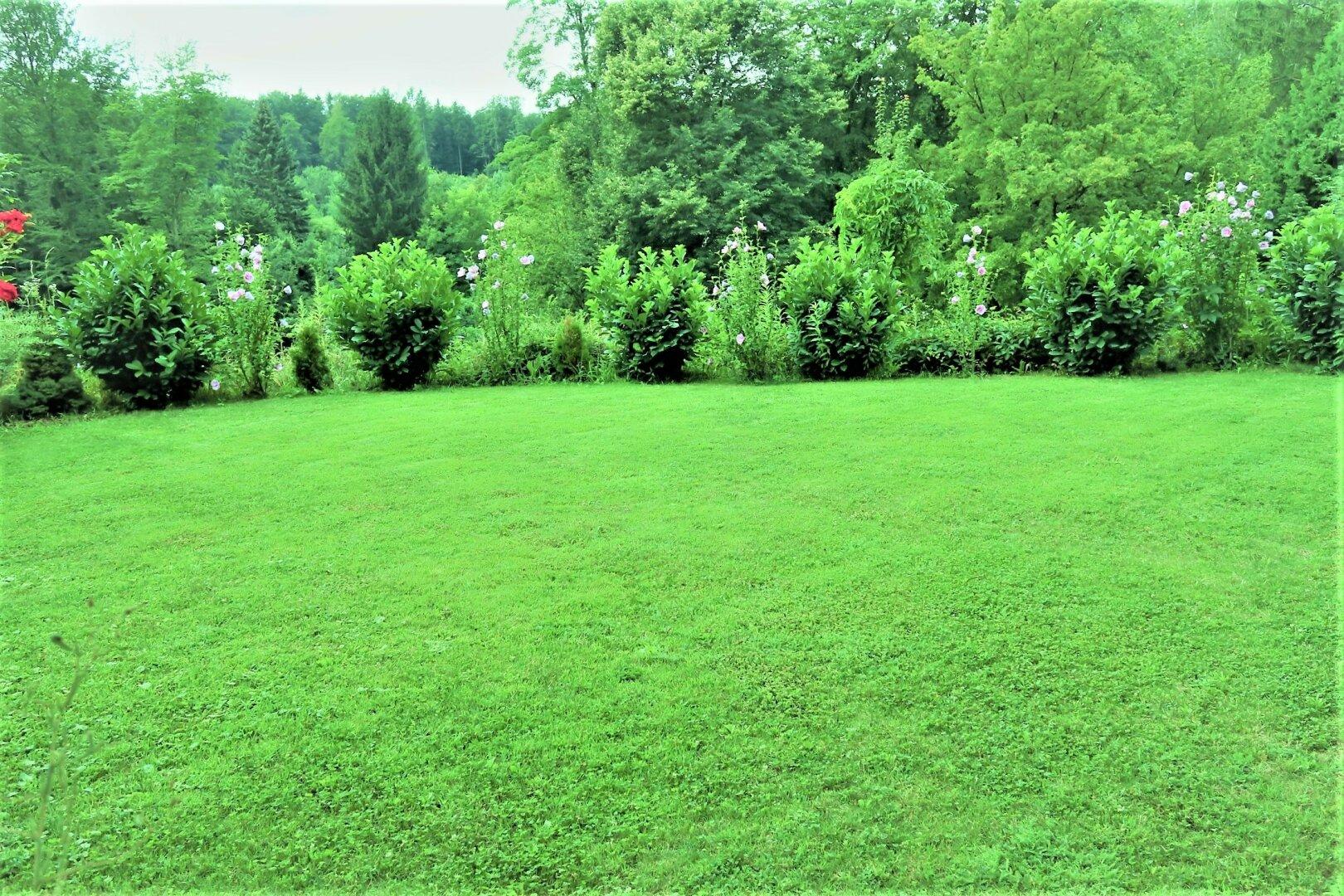 Grünfläche