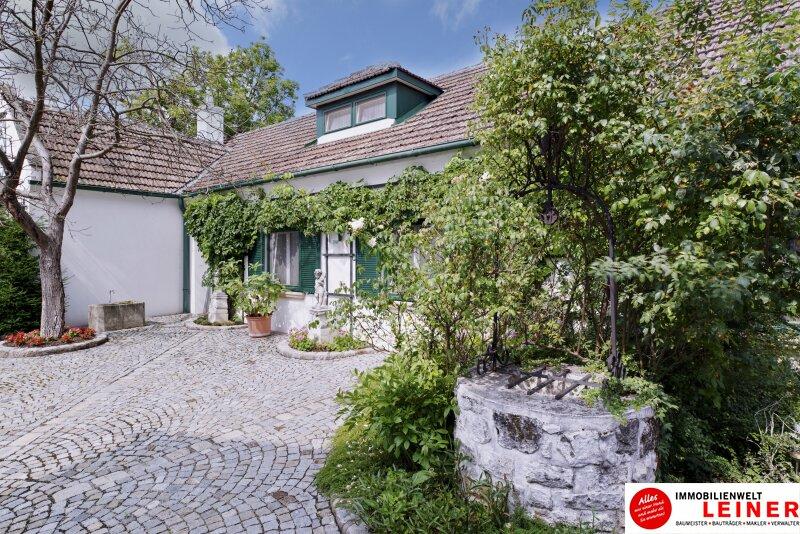 Margarethen am Moos - Geschichtsträchtiges Anwesen an der Grenze zu Wien Objekt_11233 Bild_474