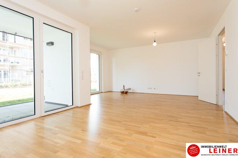 *UNBEFRISTET* Schwechat - 3 Zimmer Mietwohnung mit 104 m² großem Garten und Terrasse Objekt_9872 Bild_595