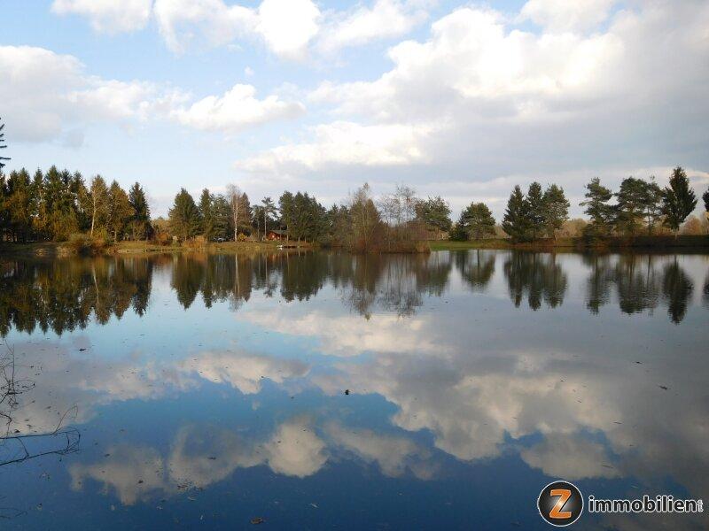 Gepflegter Teich mit viel Potential