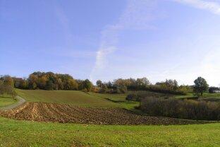 Therme Loipersdorf: Wunderschönes Baugrundstück in Ruhelage