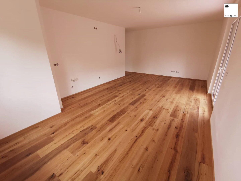 Wohnraum und Küche Demo