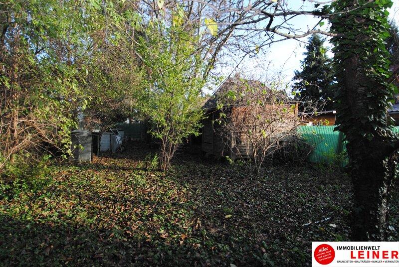 1046 m² Grundstück in Leopoldsdorf bei Wien - jeden Tag Urlaub im neuen Zu Hause Objekt_9239