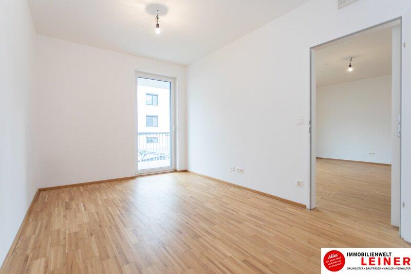 Himberg - Zinshaus mit 4% Rendite zu verkaufen Objekt_9396 Bild_319