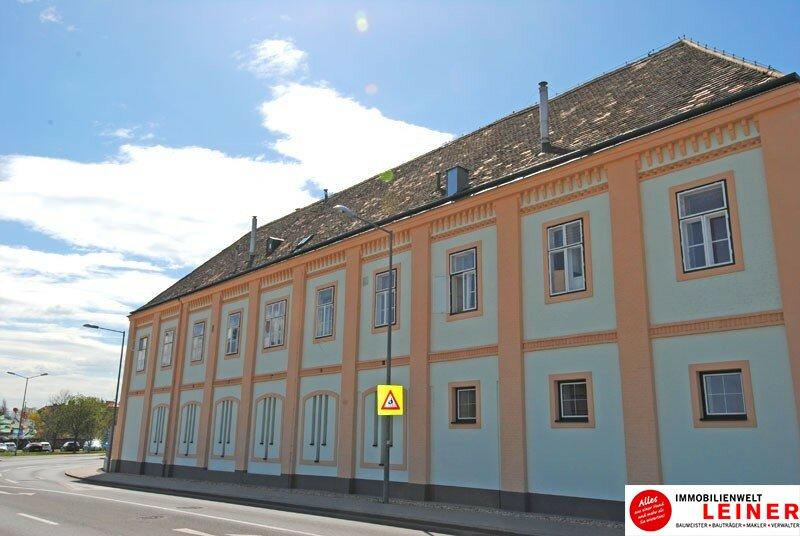 Schwechat: 2 Zimmer Arbeiterquartierwohnung sofort verfügbar! Objekt_8845 Bild_526
