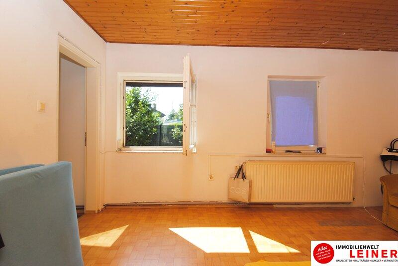 Einfamilienhaus in Schwechat - Endlich genug Platz! Objekt_8935 Bild_825