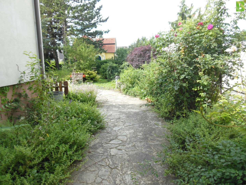 Vorgarten und Eingang