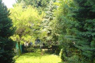 Singlehit mit Terrasse und Garten in Biedermannsdorf