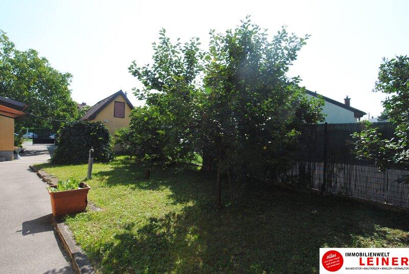 Einfamilienhaus in Schwechat - Endlich genug Platz! Objekt_8935 Bild_812