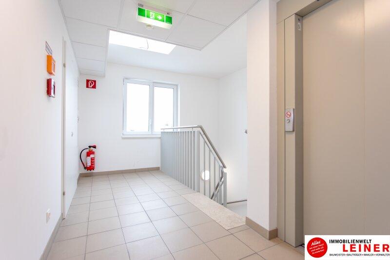 Himberg - Zinshaus mit 4% Rendite zu verkaufen Objekt_9396 Bild_326