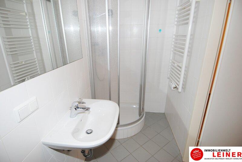Schwechat - Rannersdorf : schöne 2 Zimmer Mietwohnung sofort beziehbar! Objekt_11410 Bild_284