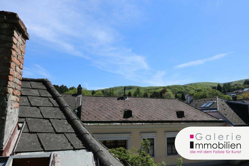 Zauberhafte Dachgeschoßwohnung mit sonniger Terrasse und schönem Ausblick Objekt_34775