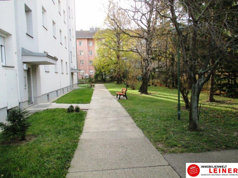 Helle 3-Zimmer Mietwohnung mit Balkon in Schwechat! Objekt_8728