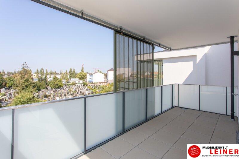 *UNBEFRISTET* Schwechat - 2 Zimmer Mietwohnung im Erstbezug mit großer Terrasse und Loggia Objekt_9406 Bild_475