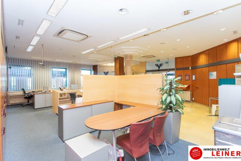 Ihr Geschäftslokal/Büro in Klosterneuburg Objekt_9990 Bild_443