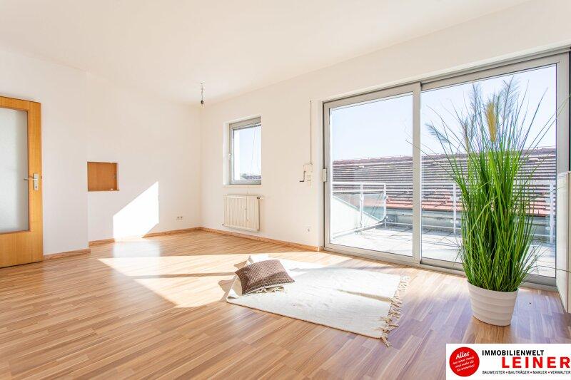 Ebergassing - 3 Zimmerwohnung im Zentrum Objekt_10432 Bild_496