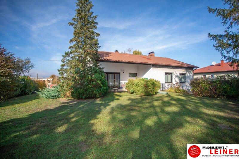 Hof am Leithaberge - 1900 m² Grundstück mit traumhaftem Einfamilienhaus Objekt_10467 Bild_837