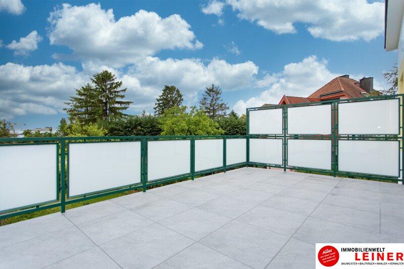 Schwechat: Saniertes Haus mit 2 getrennten Wohneinheiten zu mieten - auch für Praxis geeignet Objekt_10791 Bild_300