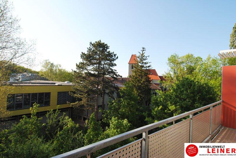 51 m² Mietwohnung in Himberg - hier wird Ihr Wohntraum wahr! Objekt_9686 Bild_760