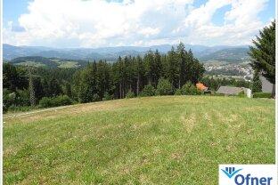 Aussichtsgrundstück über den Dächern von Voitsberg