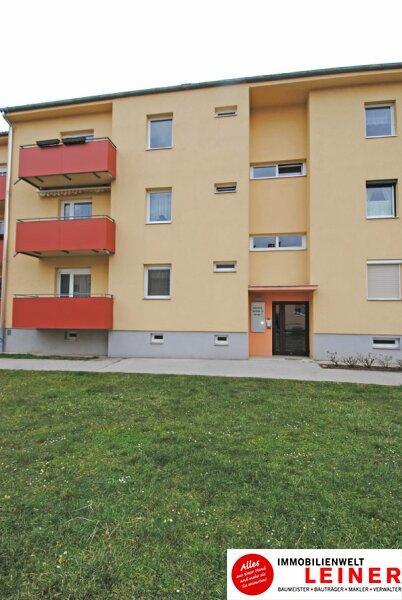 Schwechat - Single Wohnung in zentraler Lage /  / 2320Schwechat / Bild 8