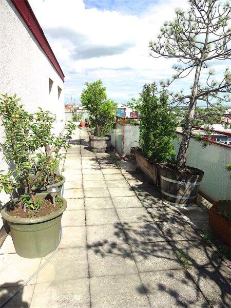 Weitblick: Terrassentraum, 103 m2 Wohnfläche + 74 m2 Terrasse, sonnig, ruhig, U1-Aderklaaerstraße! /  / 1210Wien / Bild 2