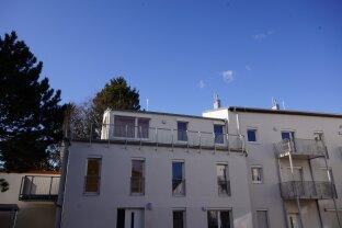 TOP moderne Terrassenwohnung