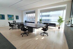 Co-Working Space und Business Center - Rotenturmstraße 17