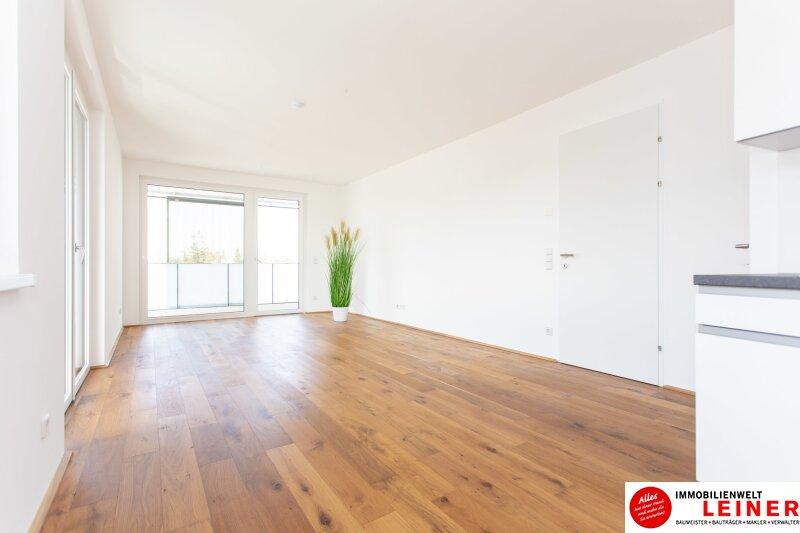 *UNBEFRISTET* Schwechat - 2 Zimmer Mietwohnung im Erstbezug mit großer Terrasse und Loggia Objekt_9406 Bild_471