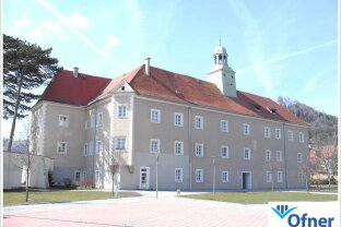 Ordination / Praxis im Schloss in Maria Lankowitz