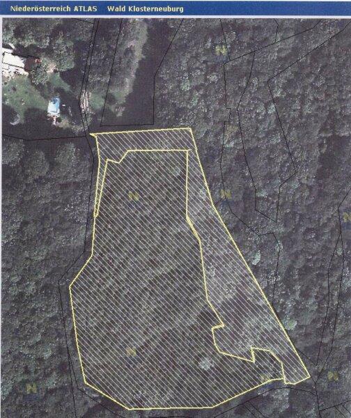 ANLAGE - Waldgrundstück