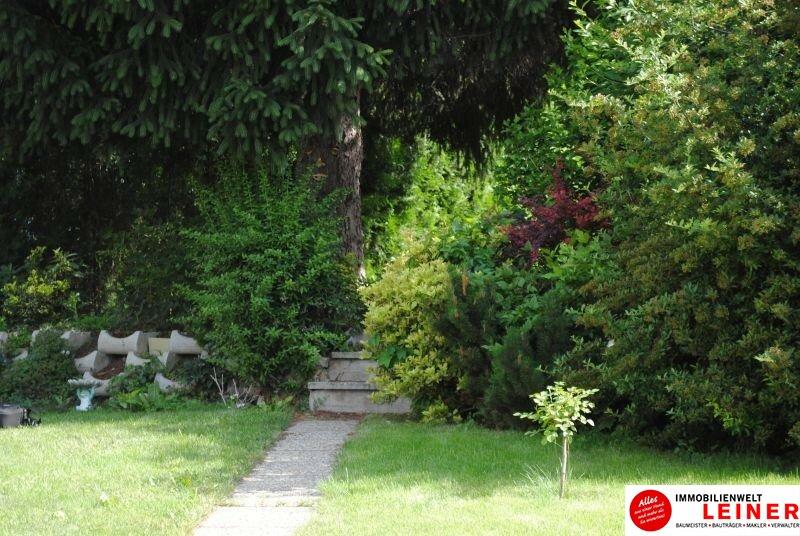 neu sanierte, kompakte Gartenwohnung in der Stadt Objekt_9846