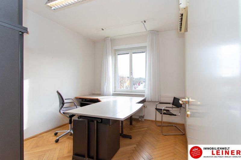 Modernes Büro im Zentrum von Schwechat Objekt_10043 Bild_487