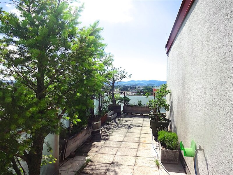 Weitblick: Terrassentraum, 103 m2 Wohnfläche + 74 m2 Terrasse, sonnig, ruhig, U1-Aderklaaerstraße! /  / 1210Wien / Bild 10