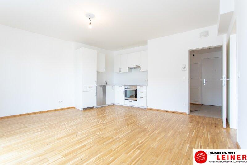 Himberg - 2 Zimmer Mietwohnung mit großartiger Terrasse Objekt_9789 Bild_406