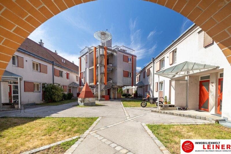 Luxuriöse  Maisonettewohnung im Zentrum von Oberlaa zu mieten Objekt_16109