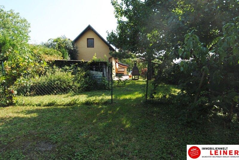 Einfamilienhaus in Schwechat - Endlich genug Platz! Objekt_8935 Bild_811