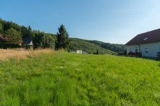 Großer Traumgrund in Oberkirchbach