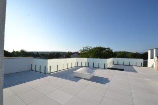 Provisionsfrei: Aussergewöhnliche Dachgeschosswohnung mit sensationeller Panorama-Terrasse und direktem Liftzugang