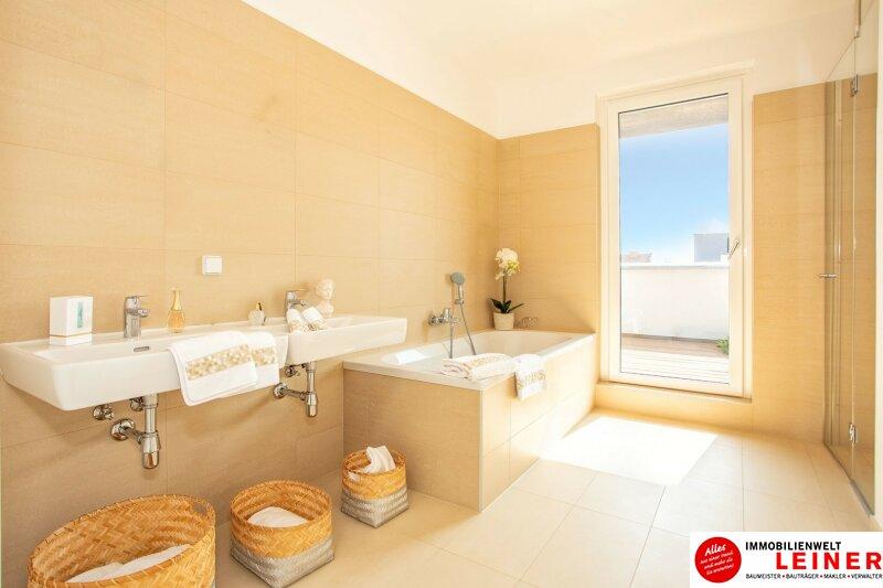 Terrassenwohnung mit 3 Zimmern in Schwechat  - unbefristeter Mietvertrag! Objekt_9767 Bild_258